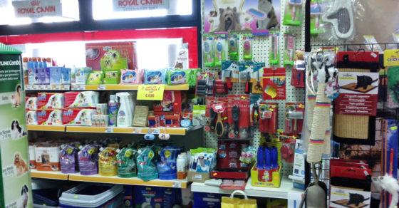 arredamento-negozio-per-animali-02
