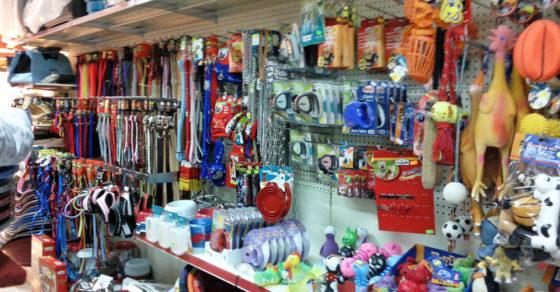 arredamento-negozio-articoli-per-animali-sardegna-05